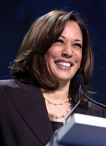 Professor Hazel Clark Comments on Senator Kamala Harris' Style Choices
